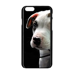 Pit Bull T Bone Puppy Apple Iphone 6/6s Black Enamel Case by ButThePitBull