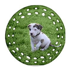 Pit Bull T Bone Puppy Ornament (Round Filigree)  by ButThePitBull