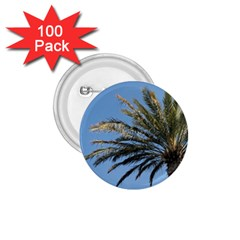 Tropical Palm Tree  1 75  Buttons (100 Pack)