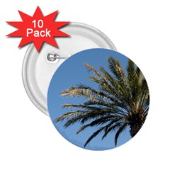 Tropical Palm Tree  2.25  Buttons (10 pack)  by BrightVibesDesign