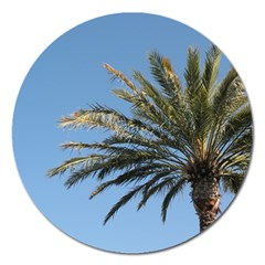 Tropical Palm Tree  Magnet 5  (round) by BrightVibesDesign