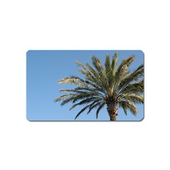 Tropical Palm Tree  Magnet (name Card) by BrightVibesDesign