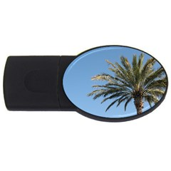 Tropical Palm Tree  Usb Flash Drive Oval (2 Gb)  by BrightVibesDesign