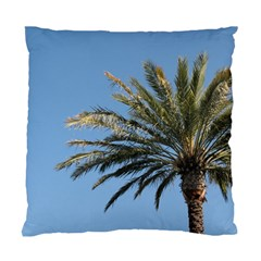 Tropical Palm Tree  Standard Cushion Case (one Side) by BrightVibesDesign