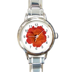 Red Rose Photo Round Italian Charm Watch by dflcprints
