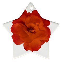 Red Rose Photo Ornament (star)  by dflcprints