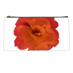 Red Rose Photo Pencil Cases by dflcprints