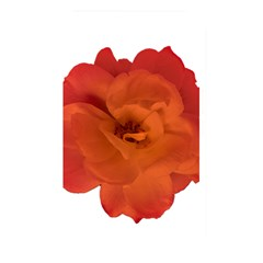 Red Rose Photo Memory Card Reader by dflcprints