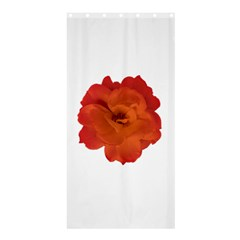 Red Rose Photo Shower Curtain 36  X 72  (stall)  by dflcprints