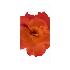 Red Rose Photo Samsung Galaxy Alpha Hardshell Back Case by dflcprints