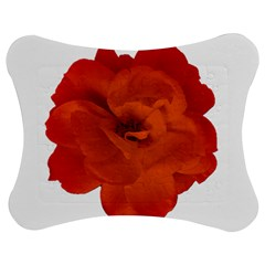 Red Rose Photo Jigsaw Puzzle Photo Stand (bow) by dflcprints