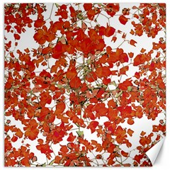 Vivid Floral Collage Canvas 12  X 12   by dflcprints