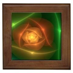 Orange Rose Framed Tiles by Delasel