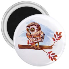 Owl 3  Magnets by TastefulDesigns