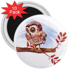 Owl 3  Magnets (10 Pack)  by TastefulDesigns