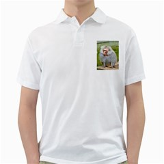 Grey Monkey  Golf Shirts by yoursparklingshop