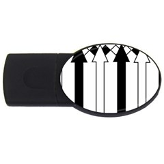 Funny Black And White Stripes Diamonds Arrows Usb Flash Drive Oval (2 Gb)  by yoursparklingshop