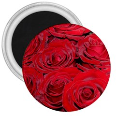 Red Love Roses 3  Magnets by yoursparklingshop
