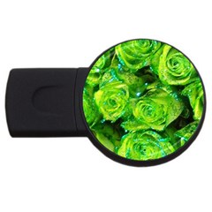 Festive Green Glitter Roses Valentine Love  Usb Flash Drive Round (2 Gb)  by yoursparklingshop