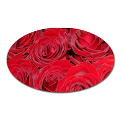 Red Roses Love Oval Magnet by yoursparklingshop