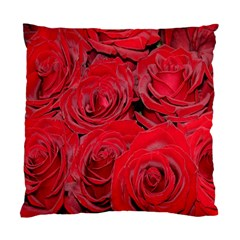 Red Roses Love Standard Cushion Case (two Sides) by yoursparklingshop