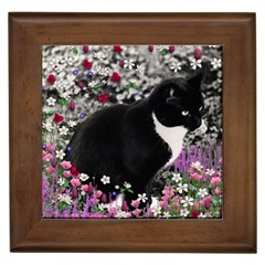 Freckles In Flowers Ii, Black White Tux Cat Framed Tiles by DianeClancy