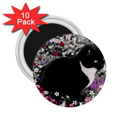 Freckles In Flowers Ii, Black White Tux Cat 2 25  Magnets (10 Pack)  by DianeClancy