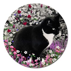 Freckles In Flowers Ii, Black White Tux Cat Magnet 5  (round) by DianeClancy