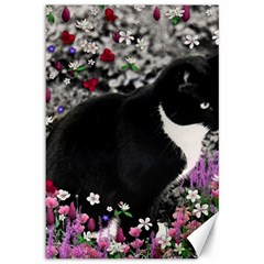 Freckles In Flowers Ii, Black White Tux Cat Canvas 12  X 18   by DianeClancy