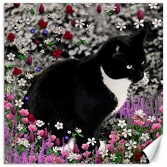 Freckles In Flowers Ii, Black White Tux Cat Canvas 16  X 16   by DianeClancy