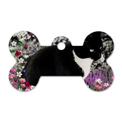 Freckles In Flowers Ii, Black White Tux Cat Dog Tag Bone (one Side) by DianeClancy