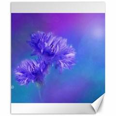 Purple Cornflower Floral  Canvas 8  X 10  by yoursparklingshop