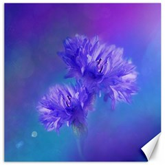 Flowers Cornflower Floral Chic Stylish Purple  Canvas 16  X 16   by yoursparklingshop