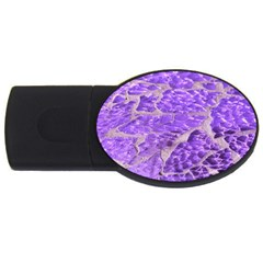 Festive Chic Purple Stone Glitter  Usb Flash Drive Oval (2 Gb)  by yoursparklingshop
