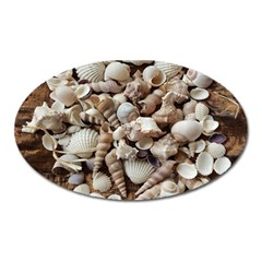 Tropical Sea Shells Collection, Copper Background Oval Magnet by yoursparklingshop