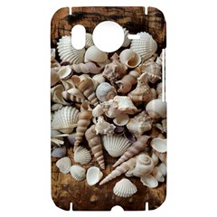 Tropical Sea Shells Collection, Copper Background HTC Desire HD Hardshell Case