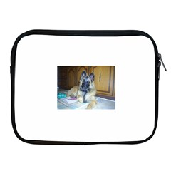 Puppy Belgian Tervueren Apple Ipad 2/3/4 Zipper Cases by TailWags