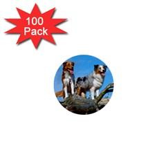 2 Australian Shepherds 1  Mini Buttons (100 pack)  by TailWags