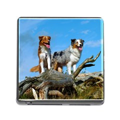 2 Australian Shepherds Memory Card Reader (square) by TailWags