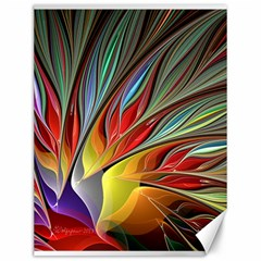 Fractal Bird Of Paradise Canvas 12  X 16  by WolfepawFractals