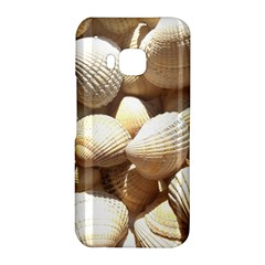 Tropical Exotic Sea Shells HTC One M9 Hardshell Case by yoursparklingshop