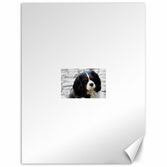 Cavalier King Charles Spaniel 2 Canvas 18  x 24   by TailWags