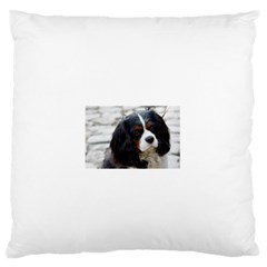 Cavalier King Charles Spaniel 2 Standard Flano Cushion Case (Two Sides) by TailWags