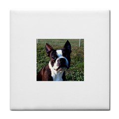 Boston Terrier Face Towel by TailWags
