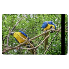 South American Couple Of Parrots Apple Ipad 2 Flip Case by dflcprints
