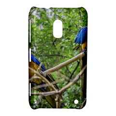 South American Couple Of Parrots Nokia Lumia 620 by dflcprints
