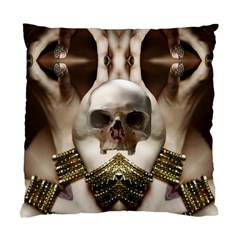 Skull Magic Standard Cushion Case (two Sides) by icarusismartdesigns