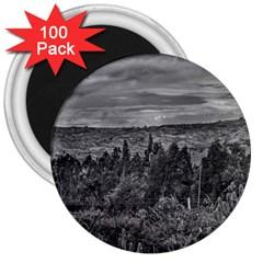 Ecuador Landscape Scene At Andes Range 3  Magnets (100 Pack) by dflcprints