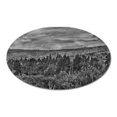 Ecuador Landscape Scene At Andes Range Oval Magnet by dflcprints