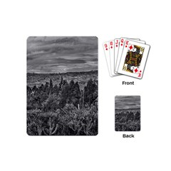 Ecuador Landscape Scene At Andes Range Playing Cards (mini)  by dflcprints